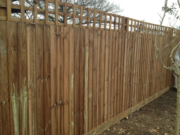 Close Boarded Garden Fencing with trellis Chelmsford, Essex CM1 Fencing